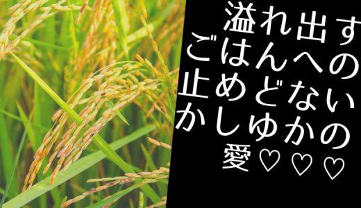 大食いの誇り〜かしゆか商店【曲げわっぱ】
